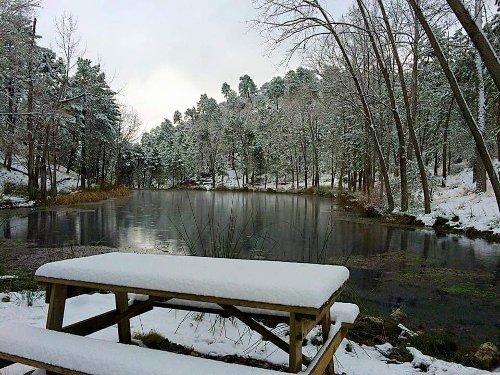 Pantano de Arroyo Frío